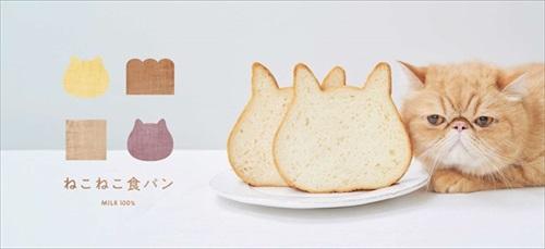 ねこねこ食パン コラボ企画