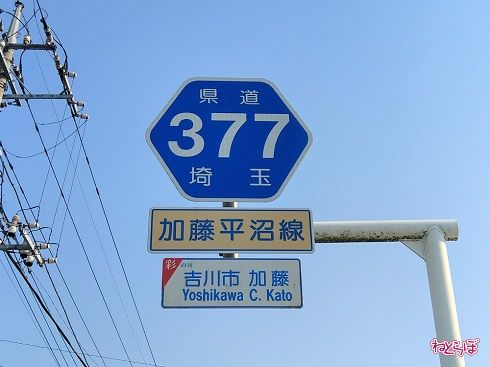 「一般県道」埼玉県道377号の路線番号案内標識(ヘキサ)