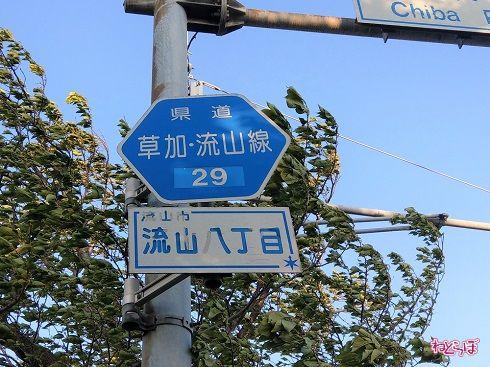 「主要地方道」千葉県道29号の路線番号案内標識(ヘキサ) このような路線名が書かれたタイプもまれにあり、首都圏では千葉に多い