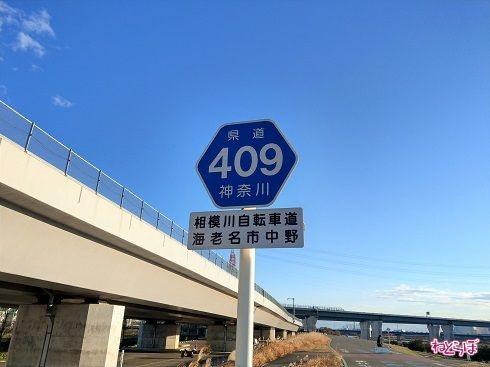「一般県道」神奈川県道409号の路線案内表示看板(ヘキサ)