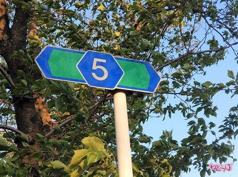 千葉県道5号の交差道路・路線番号標識。主要地方道なので緑色をしている