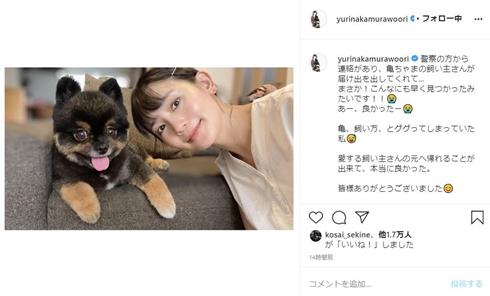 中村ゆり 天ちゃん ポメラニアン 亀 保護 渋谷