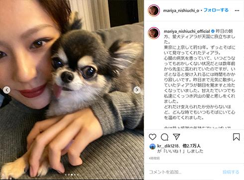 西内まりや 愛犬 ティアラ ペット 犬 Instagram インスタ 犬垢 死