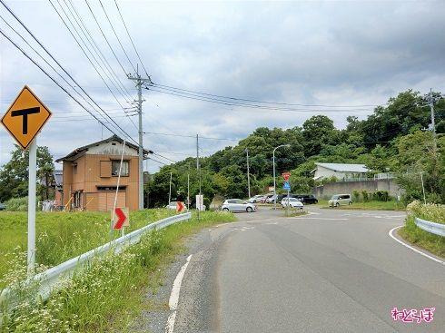 県道の側に「止まれ」の標識があります