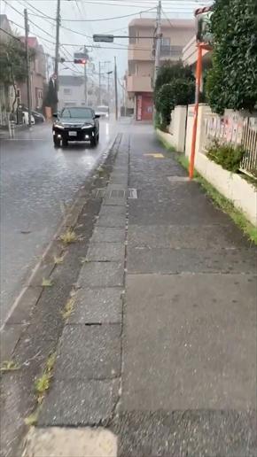 ゲリラ豪雨 動画 Twitter