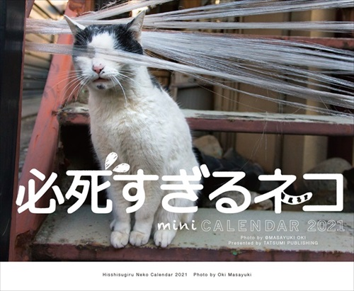 必死すぎるネコ カレンダー