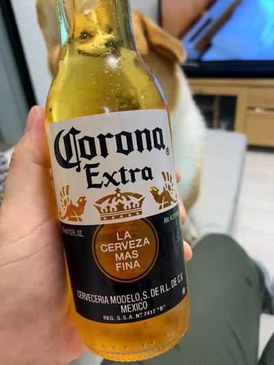 わんこビール