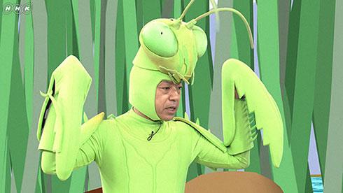 香川照之 昆虫すごいぜ カマキリ先生