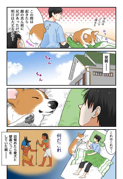 飼い主さん 外泊 コーギー 関所 我が家 犬 漫画 西田理英