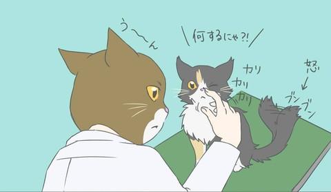 お鼻のシミ