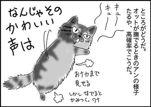 猫 夫がなでる 態度 違う メスネコ 漫画