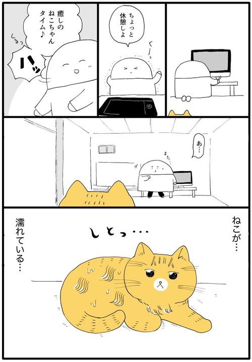 ぺろぺろいっぱいネコちゃん