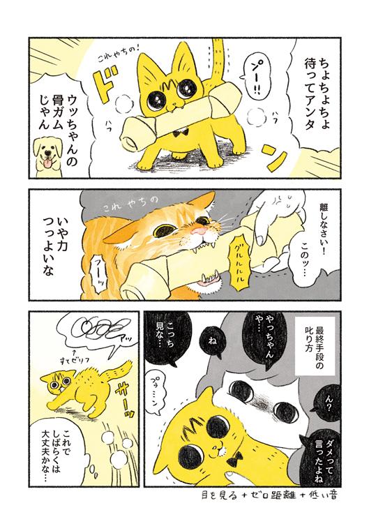やっちゃんの食欲2