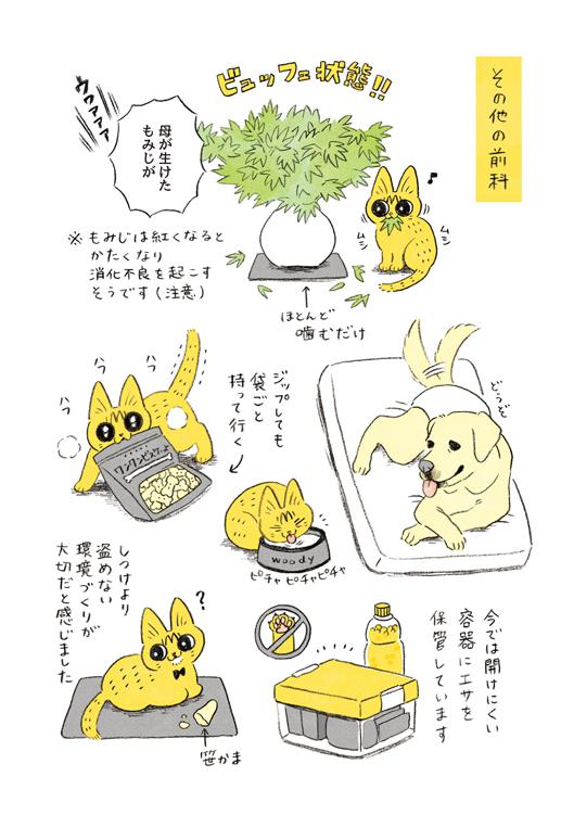 やっちゃんの食欲4