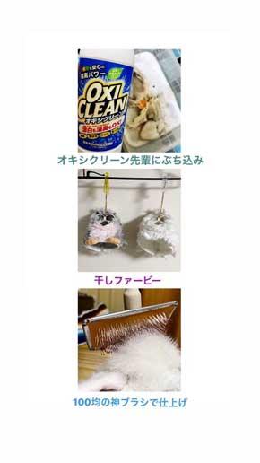 ファービー きれいにする 洗う 洗濯 解体 愛 ビフォーアフター