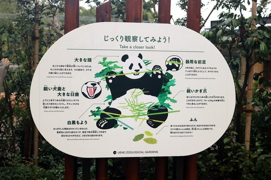パンダのもり