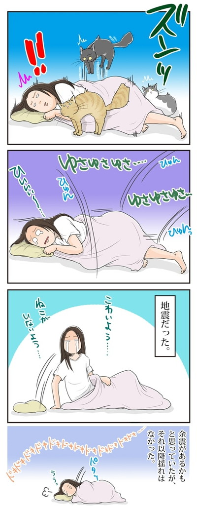 眠れない夜