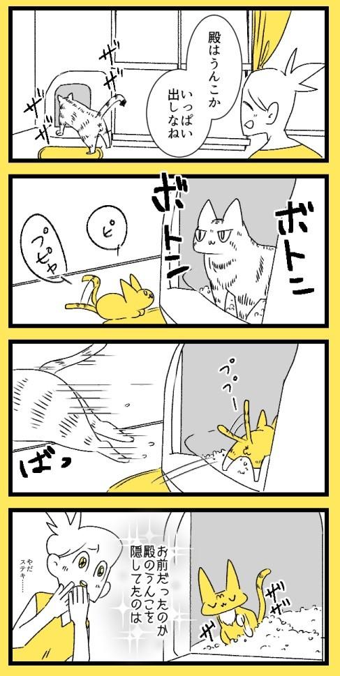 砂をかけないおじちゃんと、スナをかける子猫