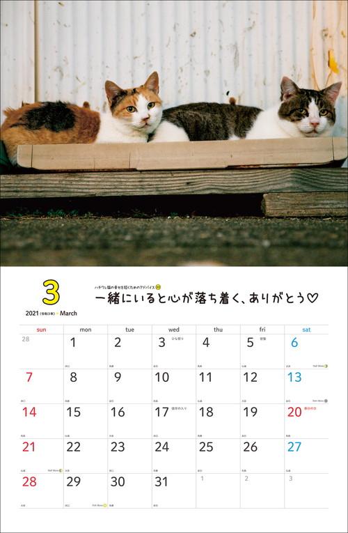 2021 幸せを招くハチワレ猫カレンダー