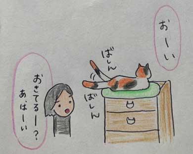 愛猫 クロ 23歳 誕生日 白髪 長生き 黒猫 美人