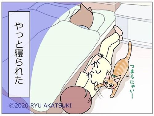 ベッド下の封印を巡る攻防