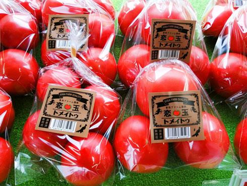 トメイトゥ 商品名 英語 発音 曽我ファーム 新潟 トマト 農家
