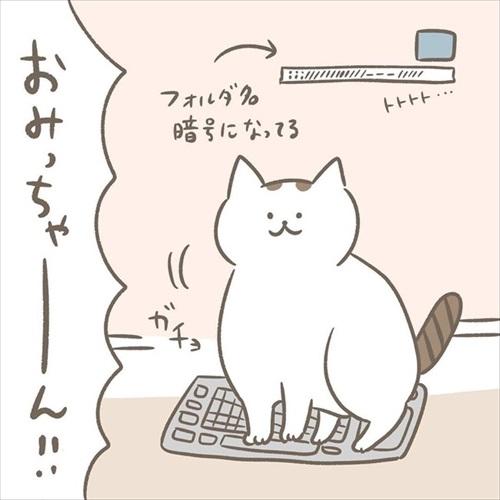 邪魔する猫ちゃんとの攻防