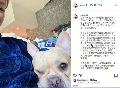 浜崎あゆみ 妊娠 愛犬