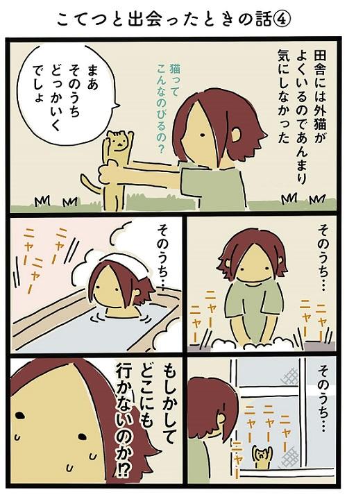 猫ちゃんのわがまま