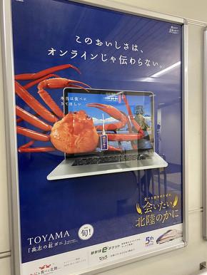 鉄道 北陸新幹線 カニ 観光 冬