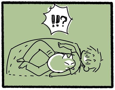 お布団でネコちゃんと一緒