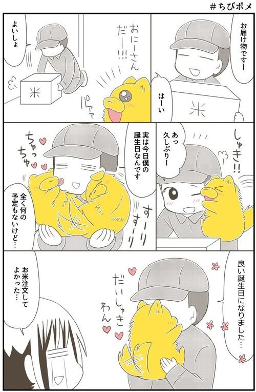 ちびポメ漫画2枚目