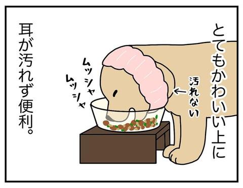 「耳の長い犬」