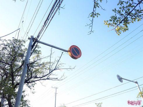 県道で見かけた大型の「駐車禁止」