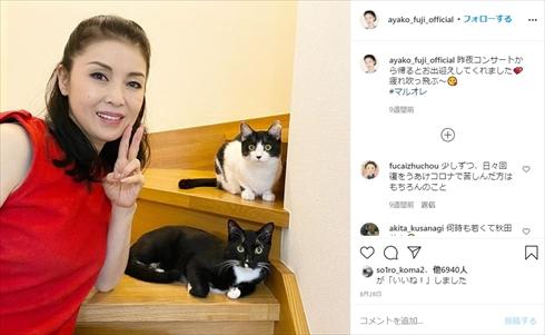 藤あや子 猫 ハロウィン 仮装 ブログ マルオ レマル オレオ