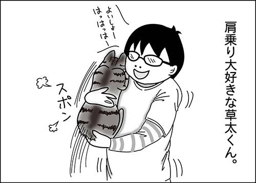 肩のり猫1