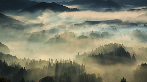 京都の日本画のような風景