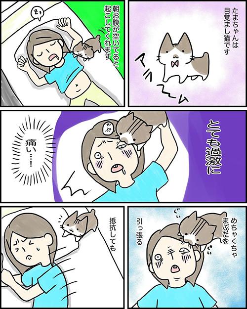 目覚まし猫ちゃん漫画1