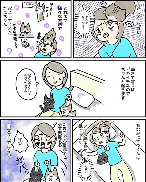 目覚まし猫ちゃん漫画2
