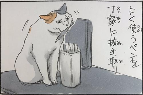 猫のお仕事5枚目