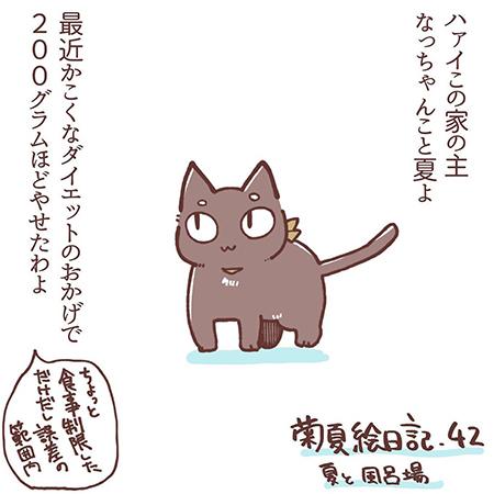 菊夏絵日記42の1