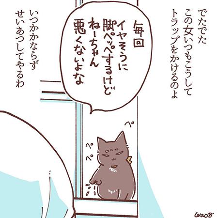 菊夏絵日記42の10