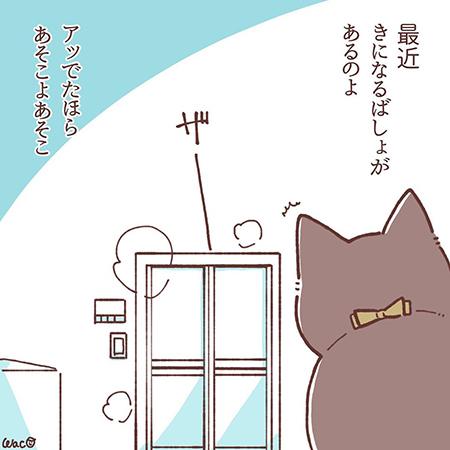菊夏絵日記42の2