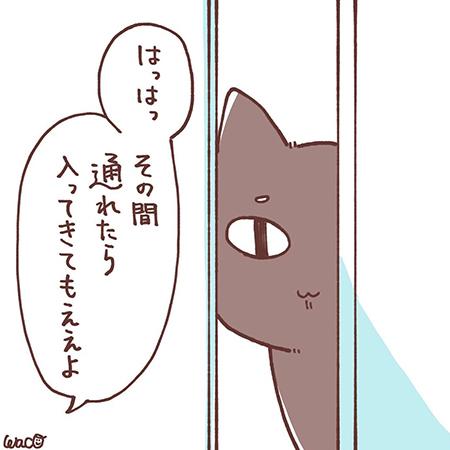 菊夏絵日記42の5