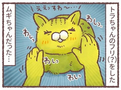 「深夜の謎猫ショー」