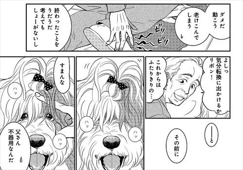おじさんと老犬の話