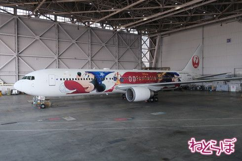 JAL DREAM EXPRESS FANTASIA 80の機体