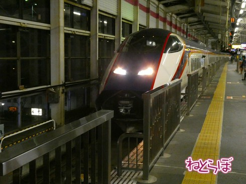渋谷駅前 青ガエル 大館 秋田犬 鶏めし