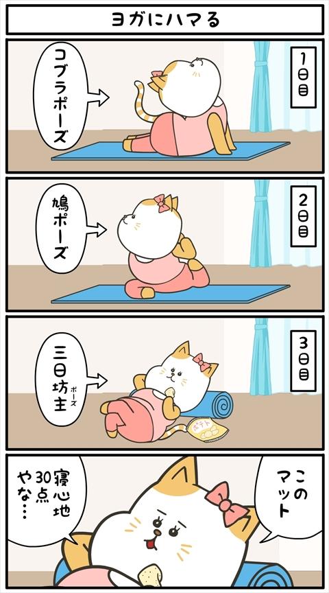 ヤバにゃん02