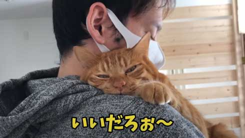 抱っこ 大好き 猫 表情 かわいい お出かけ 阻止 デレ
